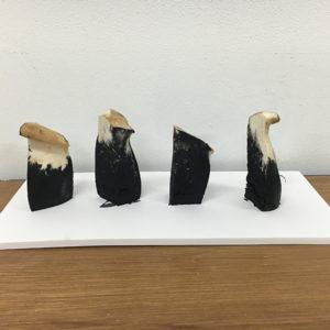 森園 真臣|MORIZONO Masaomi<br />