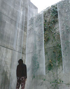 玉木真|TAMAKI Makoto<br />境界を越えた向こう
