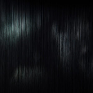 原田 実季 HARADA Miki<br />イメージの系譜