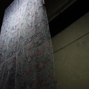 小泉 大季|KOIZUMI Daiki<br />空間の模様